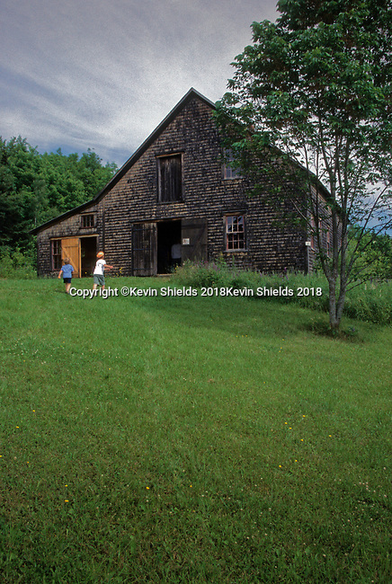 Two boys going to an old barn, New Sweden, Maine, USA