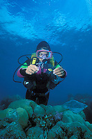 Australia, Queensland, Great Barrier Reef, Lizard Island, Marine Biologist catching fis