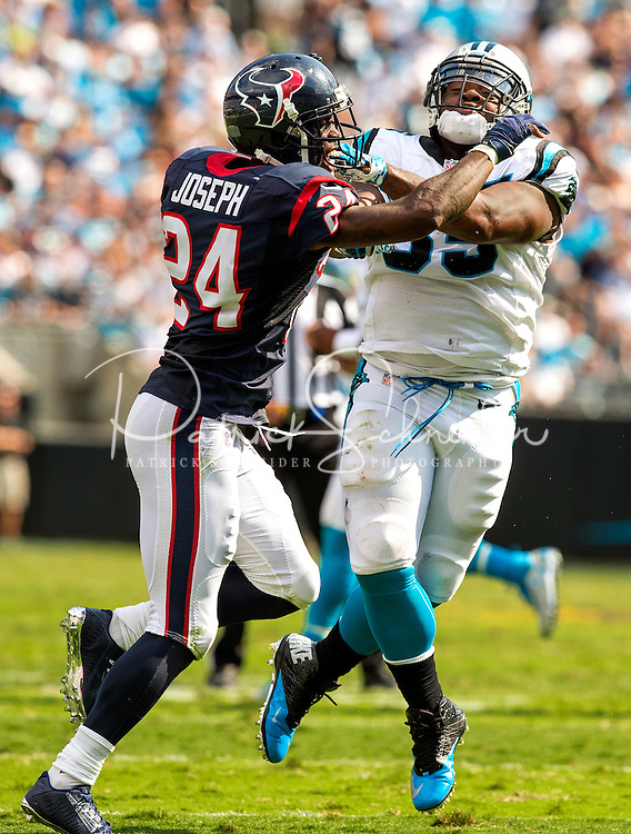 Carolina Panthers vs. Houston Texans during their NFL game Sunday afternoon September 20, 2915  at Bank of America Stadium in Charlotte, North Carolina.<br /> <br /> Charlotte Photographer: PatrickSchneiderPhoto.com