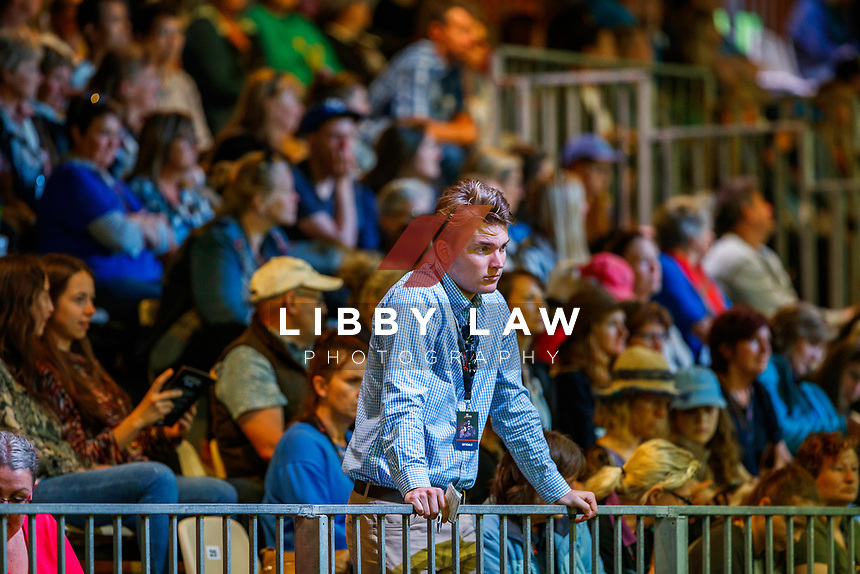 NZWA Performance Horse Auction. 2019 Equitana Auckland. ASB Showgrounds. Auckland. New Zealand. Saturday 23 November. Copyright Photo: Libby Law Photography