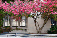 University of Chicago - Lab School - Fall Shots