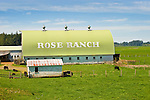 Rose Ranch Barn, South Bend, WA.