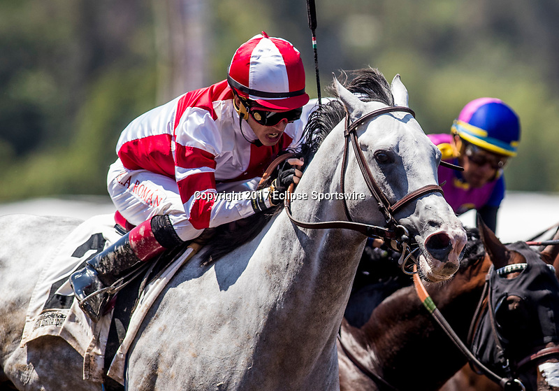 ARCADIA, CA - MAY 27: Honor and Courage #2 with Evin Roman up breaks his maiden at Santa Anita Park  on May 27, 2017 in Arcadia, California. (Photo by Alex Evers/Eclipse Sportswire/Getty Images)