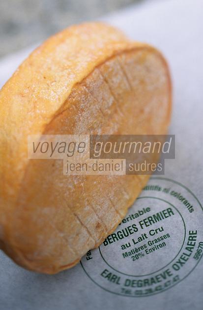 Europe/France/Nord-Pas-de-Calais/59/Nord/Oxelaere: Fromage   de Bergues à la ferme Degraeve