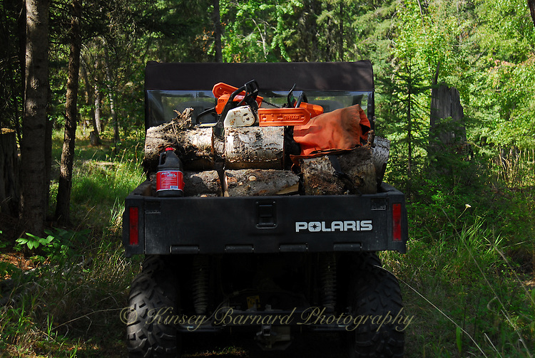 Polaris 6x6 loaded with birch.