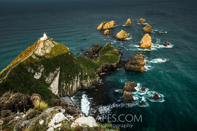 Nugget Point lighthouse with rocky islets, Catlins, Southland, New Zealand, NZ