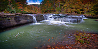 Haw Creek Falls  is located in Haw Creek campground of the Bayou Ranger District of the Ozark National Forest.  The small steam contains the falls which are only a short walk on an access trail suitable for physically disabled visitors.  The falls are only about 5 feet high at the most, but are very picturesque even with low water.  Located nearby  is Big Piney Wild and Scenic River and access to the Ozark Highlands Trial.