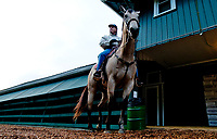 BALTIMORE, MD - MAY 15: Trainer D. Wayne Pukas on the backside during Preakness Week at Pimlico Race Course on May 15, 2018 in Baltimore, Maryland (Photo by Scott Serio/Eclipse Sportswire/Getty Images)