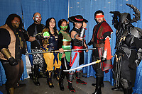 MIAMI BEACH, FL - JULY 05: Cosplayers pose for a portrait during Florida Supercon held at the Miami Beach Convention Center on July 5, 2019 in Miami Beach, Florida.<br /> CAP/MPI04<br /> ©MPI04/Capital Pictures
