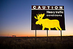 Caution: Animals sign along Highway 28, twilight in rural Wyoming
