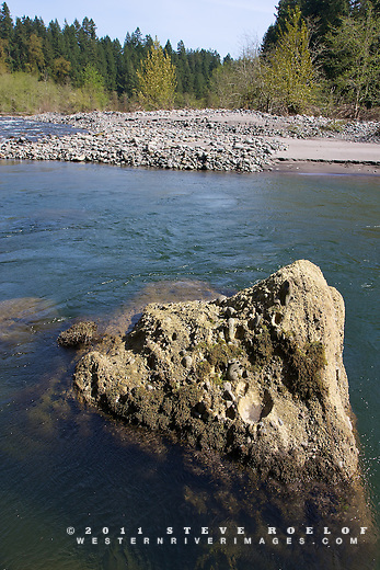A large boulder and pool below a cobble bar riffle on a side channel of the Sandy River, Oregon.