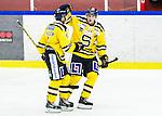 Huddinge 2015-09-20 Ishockey Division 1 Huddinge Hockey - S&ouml;dert&auml;lje SK :  <br /> S&ouml;dert&auml;ljes Jakob Wallin firar sitt 4-1 m&aring;l med Paul Eriksson under matchen mellan Huddinge Hockey och S&ouml;dert&auml;lje SK <br /> (Foto: Kenta J&ouml;nsson) Nyckelord:  Ishockey Hockey Division 1 Hockeyettan Bj&ouml;rk&auml;ngshallen Huddinge S&ouml;dert&auml;lje SK SSK jubel gl&auml;dje lycka glad happy