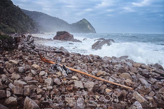 Coastal section of Heaphy Track at Scott's Beach, Kahurangi National Park, West Coast, New Zealand