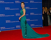 Sophia Bush arrives for the 2015 White House Correspondents Association Annual Dinner at the Washington Hilton Hotel on Saturday, April 25, 2015.<br /> Credit: Ron Sachs / CNP