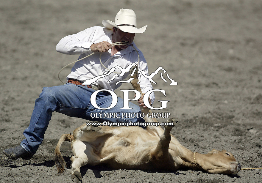27 Aug 2009:  Seth Hopper from Stanfield, Oregon scored a 9.3 in the Tie Down roping competition at the Kitsap County Thunderbird PRCA Pro Rodeo in Bremerton, Washington.