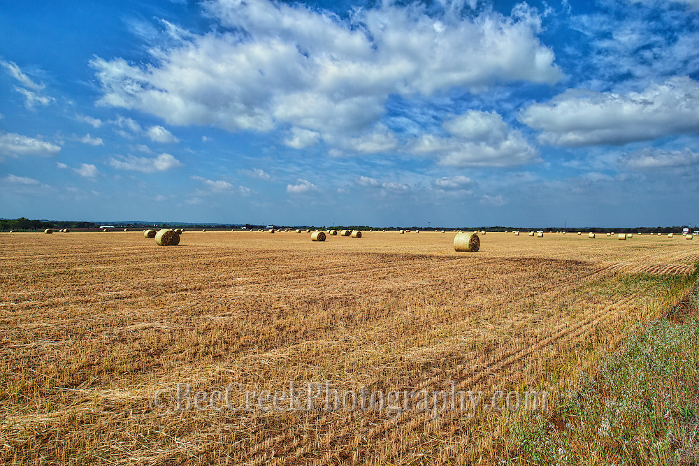 A field of hay bales with a beautiful blue sky and white clouds.