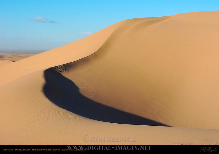 Sand Dune, Sonora Desert, Sonny Bono Wildlife Refuge, Salton Sea, Southern California