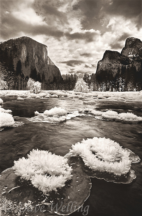 799451180bw rime ice crystals or hoarfrost on the merced river with el capitan in the background are rendered brilliant white in this black and white rendition of yosemite national park california