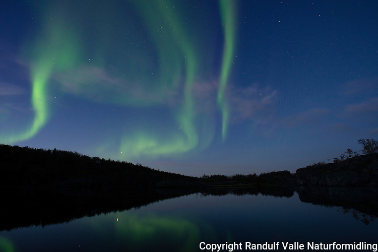 Nordlys over Stabbursdalen nasjonalpark i september. ---- Northern lights in september.