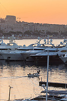 Europe/France/Provence-Alpes-Côte d'Azur/Alpes-Maritimes/Cannes:  A l'aube les Yacht au Vieux Port et en fond La Croisette  // Europe, France, Provence-Alpes-Côte d'Azur, Alpes-Maritimes, Cannes:   At dawn the Yacht to the Old Port and La Croisette background