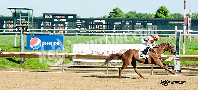 Bellamy Fleet winning at Delaware Park on 7/29/13