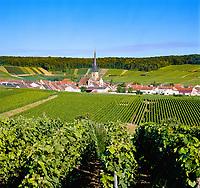France, Département Marne, Champagne, Villers-aux-Nœuds: wine village | Frankreich, Département Marne, Champagne, Villers-aux-Nœuds: Weindorf
