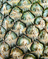 PINEAPPLE OVULES