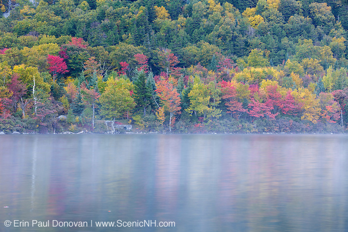 Autumn foliage along the shore of Echo Lake in Franconia Notch State Park of the New Hampshire White Mountains on a foggy autumn morning.