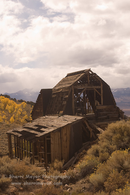 Chemung Mine, Bridgeport, California