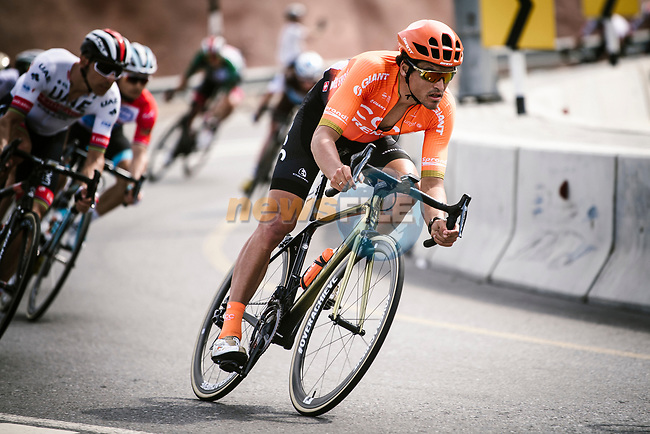 Greg Van Avermaet (BEL) CCC Team descends during Stage 4 of 10th Tour of Oman 2019, running 131km from Yiti (Al Sifah) to Oman Convention and Exhibition Centre, Oman. 19th February 2019.<br /> Picture: ASO/P. Ballet | Cyclefile<br /> All photos usage must carry mandatory copyright credit (© Cyclefile | ASO/P. Ballet)