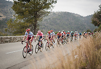 Nils Politt (DEU/Katusha-Alpecin) & co in pursuit of Matteo Trentin<br /> <br /> Stage 8: Nice to Nice (110km)<br /> 77th Paris - Nice 2019 (2.UWT)<br /> <br /> ©kramon