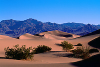 Death Valley National Park, California, CA, USA - Mesquite Sand Dunes and Funeral Mountains near Stovepipe Wells at Sunrise
