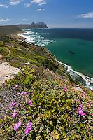 Cape Peninsula Coast-line on the False Bay.
