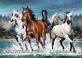 Interlitho, Lorenzo, REALISTIC ANIMALS, paintings, 5 wild horses, KL4394,#a# realistische Tiere, realista, illustrations, pinturas ,puzzles