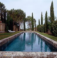 The swimming pool is surrounded by tall cypress trees
