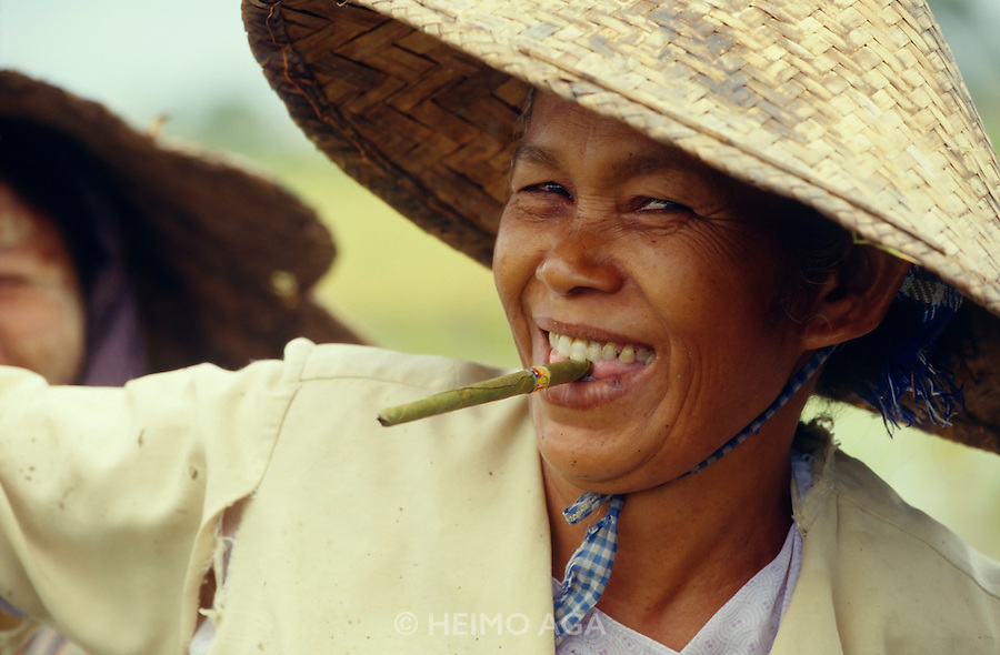 Rice planter having a Burmese-cigarette-break.