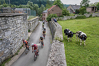 riders taking an alternative street up La Redoute<br /> <br /> Ster ZLM Tour (2.1)<br /> Stage 4: Hotel Verviers &gt; La Gileppe (Jalhay)(190km)