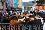 Kenmare Fair day