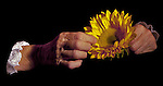Set on a black background, a woman's forearms and hands float in the image as she picks petals from a yellow sunflower.  The image expresses emotion.