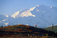 Mt. Denali, Hikers, Denali National Park, Alaska.