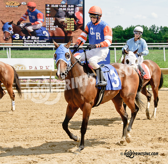 A. P Wild winning at Delaware Park on 7/17/14