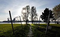 Nederland - Amsterdam -  November 2019.  Het Keerkringpark in Amsterdam Noord. Haven van Amsterdam. Noordzeekanaal.  Foto Berlinda van Dam / Hollandse Hoogte