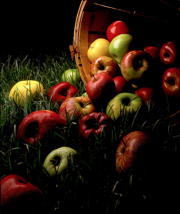Bushel of red, green and yellow apples.