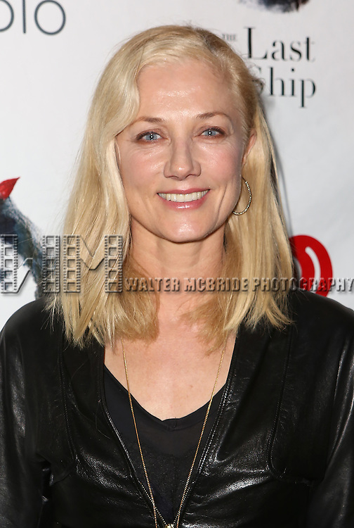 Joely Richardson attends the Broadway Opening Night performance of 'The Last Ship' at the Neil Simon Theatre on October 26, 2014 in New York City.
