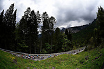 The peleton in action in the Dolomites during Stage 15 of the 2018 Giro d'Italia, running 156km from Tolmezzo to Sappada, Italy. 20th May 2018.<br /> Picture: LaPresse/Fabio Ferrari | Cyclefile<br /> <br /> <br /> All photos usage must carry mandatory copyright credit (&copy; Cyclefile | LaPresse/Fabio Ferrari)