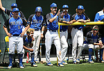 Basic players cheer for teammates in the NIAA 4A baseball championship game against Palo Verde in Reno, Nev., on Saturday, May 19, 2018. Palo Verde won 4-2. Cathleen Allison/Las Vegas Review-Journal