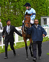 Winner of The Smith & Williamson Maiden Fillies' Stakes (Div 2), Mam'selle ridden by Robert Winston and trained by William Haggas enter the winners enclosure during Afternoon Racing at Salisbury Racecourse on 18th May 2017