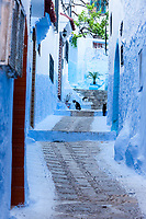 Chefchaouen, Morocco.  Street Scene with Cats.