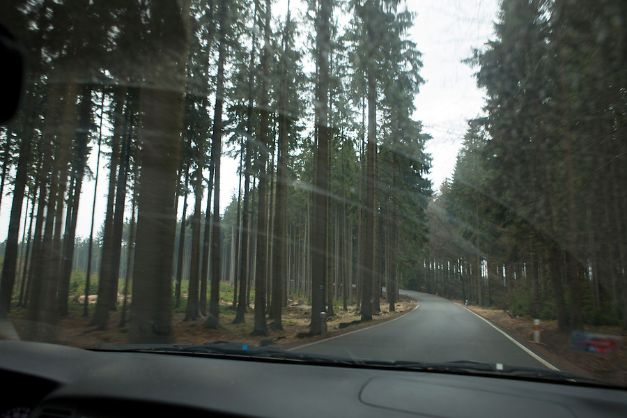 View from car of the forests of Southern Bohemia, Czech Republic, Europe