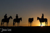 riding horseback at sunrise Cowboys working and playing. Cowboy Cowboy Photo Cowboy, Cowboy and Cowgirl photographs of western ranches working with horses and cattle by western cowboy photographer Jess Lee. Photographing ranches big and small in Wyoming,Montana,Idaho,Oregon,Colorado,Nevada,Arizona,Utah,New Mexico.